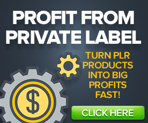 PROFIT FROM PLR- Click Here