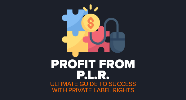 Profit From PLR by Simon Hodgkinson